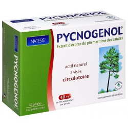 PYCNOGENOL tonique circulatoire - NATESIS