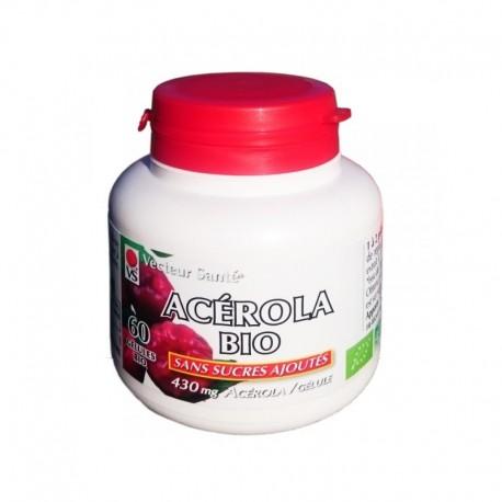 Acérola bio - Vecteur Santé