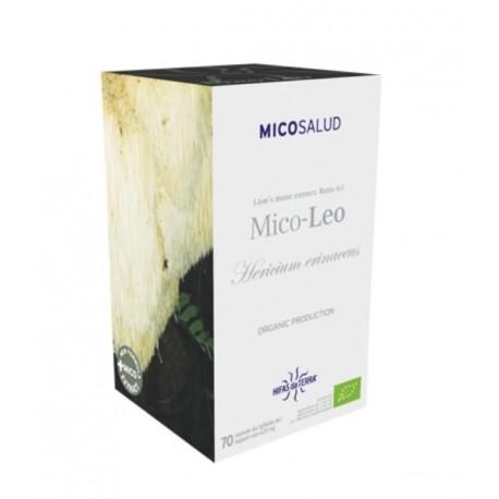 Mico-Léon - Héricium erinaceus